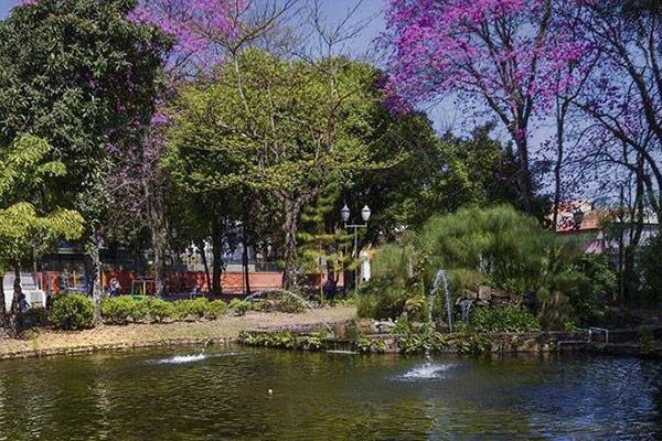 Parque Alonso Ferreira de Camargo – Jardim Público